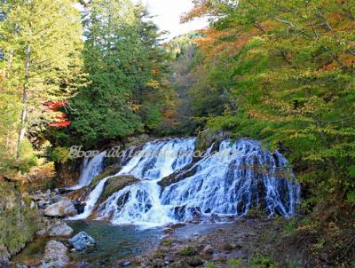 魚帰りの滝(秋)
