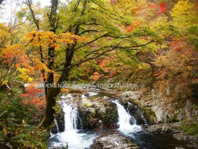 御手洗川金山の滝2