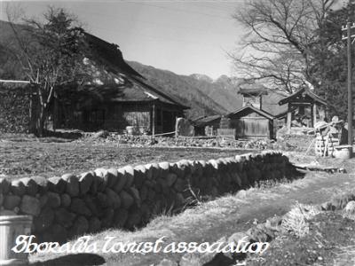 中野照蓮寺と桜