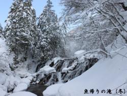 魚帰りの滝(冬)