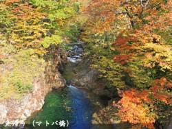 魚帰り(マトバ橋)